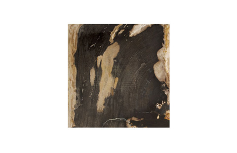 Phillips Collection - Petrified Wood Stool - ID74015