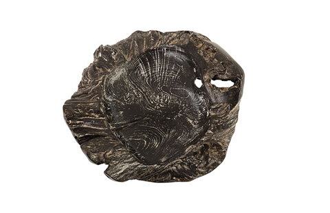 Phillips Collection - Teak Root Bowl - ID74416