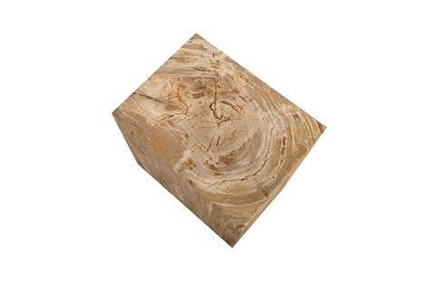 Phillips Collection - Petrified Wood Stool - ID76219