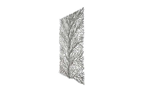 Phillips Collection - Coral Wall Art - PH79021