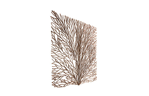 Phillips Collection - Coral Wall Art - PH80577