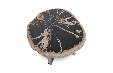 Phillips Collection - Petrified Wood Side Table - ID68748