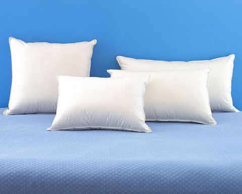 Pine Cone Hill, Inc. - Duet Down Pillow - 71018