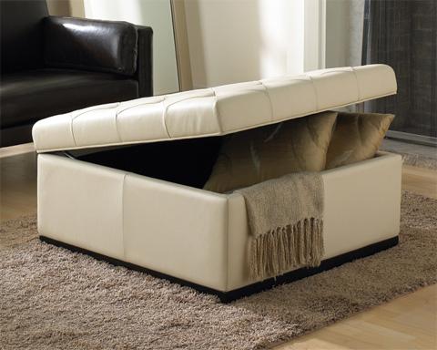 Sunpan Modern Home - Noah Tufted Storage Ottoman - 34943