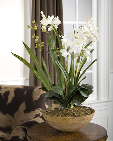 Uttermost Company - Moth Orchid Planter - 60039