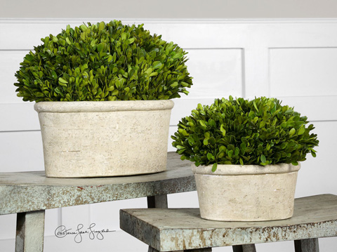 Uttermost Company - Preserved Boxwood Oval Domes - 60107