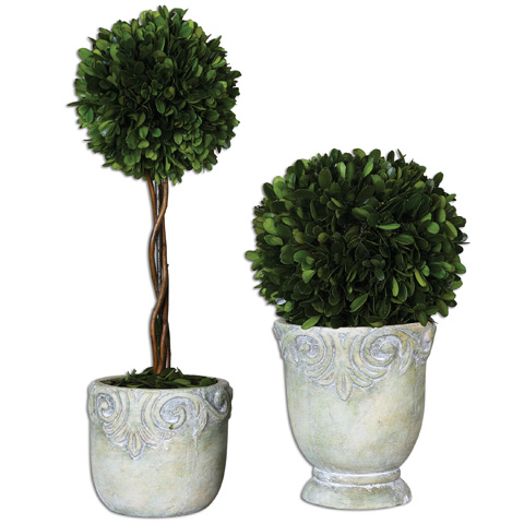 Uttermost Company - Preserved Boxwood Ball Topiaries - 60112