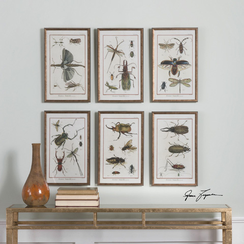 Uttermost Company - Multi Insects Art-Set of Six - 33628