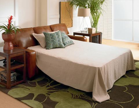 Lane Home Furnishings - Ethan Queen Sleeper Sofa - 677-35