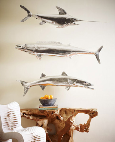 Phillips Collection - Wahoo Fish - PH62417