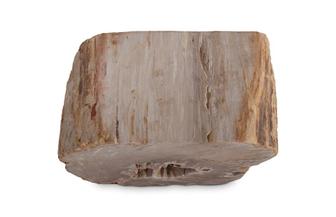 Phillips Collection - Petrified Wood Stool - ID73971