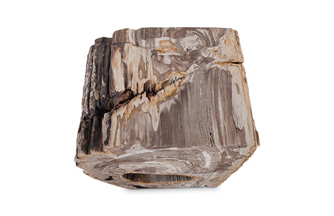Phillips Collection - Petrified Wood Stool - ID74198