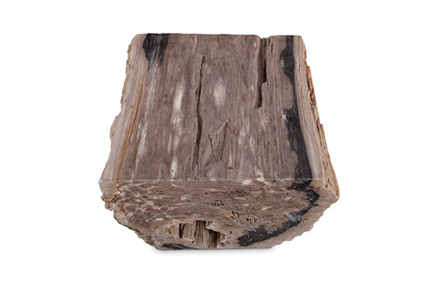 Phillips Collection - Petrified Wood Stool - ID74205