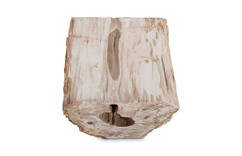 Phillips Collection - Petrified Wood Stool - ID74207
