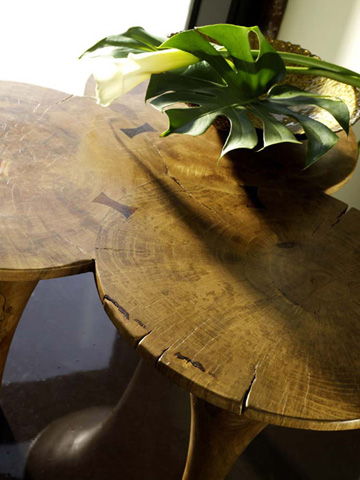 Phillips Collection - Butterfly Coffee Table - TH54440