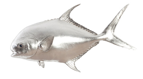 Image of Permit Fish in Silver Leaf