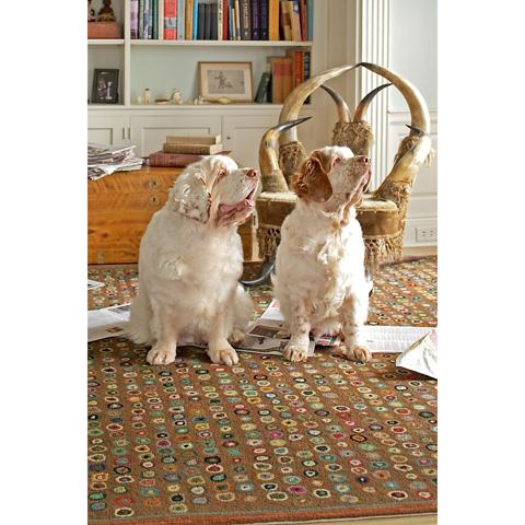 Dash & Albert Rug Company - Cat's Paw Brown Wool Micro Hooked Rug - RDA014-58