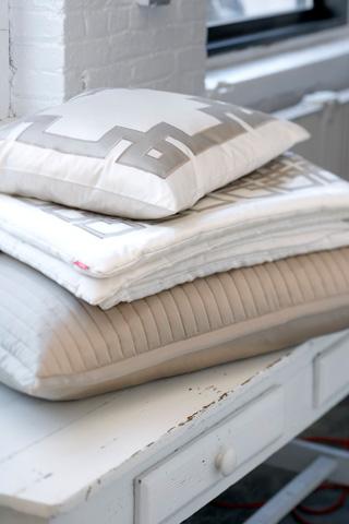 Ann Gish - Mariana Applique Pillow in Charmeuse - PWCH1616MA