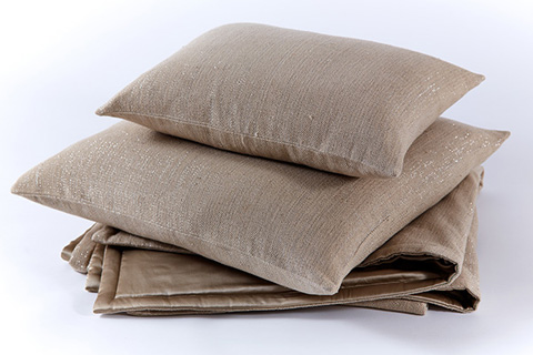 Image of Quicksilver Pillow