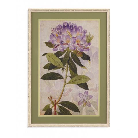 Bassett Mirror Company - Rhododendron II - 9900-892B