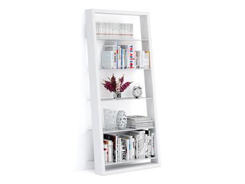 Image of Eileen Blanc Leaning Bookshelf
