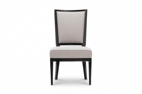 Image of Modern Luxury Side Chair