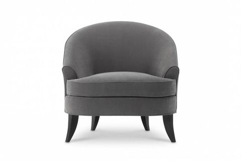 Image of Modern Luxury Club Chair