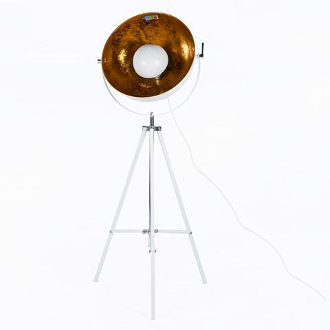 Control Brand - The Fortune Lamp - LI2032WHT