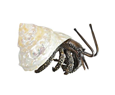 Image of Unduza Hermit Crab