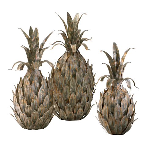 Image of Variegated Pineapples