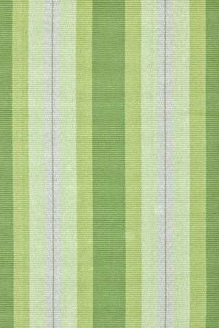 Dash & Albert Rug Company - Thyme Ticking Woven Cotton 8x10 Rug - RDA227-810