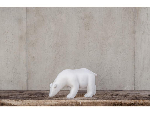 Image of A White Polar Bear