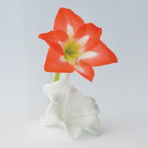 Global Views - Star Lily Bud Vase - 8.81209
