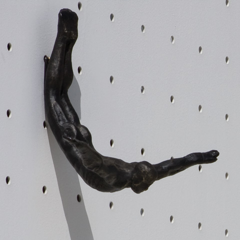 Image of Wall Diver