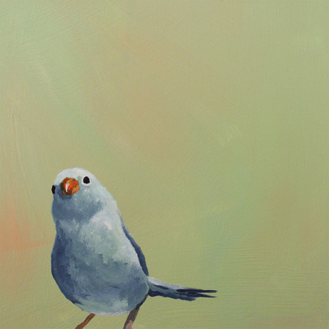 Image of Little Blue Bird