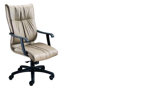 Harden Furniture - High Back Ergonomic Office Chair - 1706-000