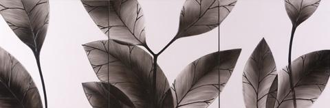 HEBI ARTS, INC - Leaf Painting - WP0002