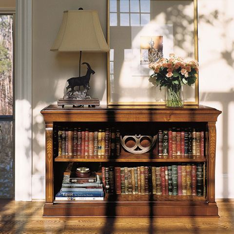 Image of Low Bookcase