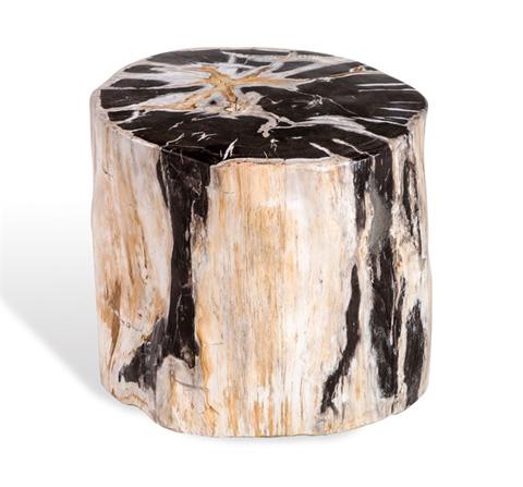 Interlude Home - Lestari Petrified Wood Side Table - 165003