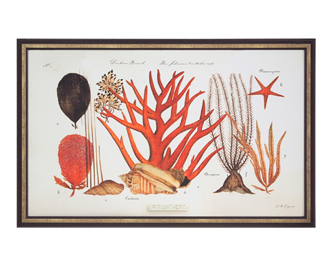 John Richard Collection - Coral Reef II - GBG-0841B