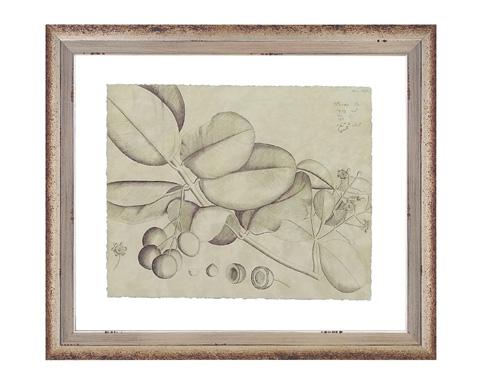 John Richard Collection - Vintage Leaf Study IV - GRF-5156D