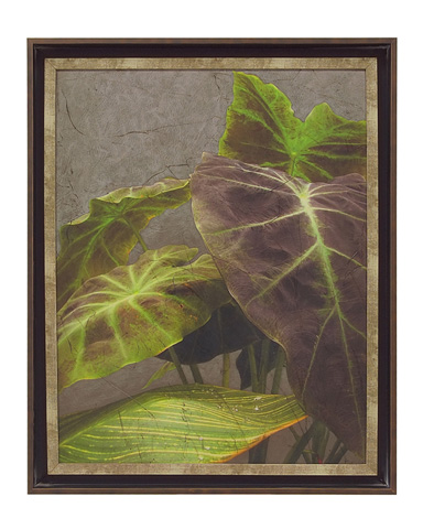 John Richard Collection - Dramatic Leaves I - GRF-5241A