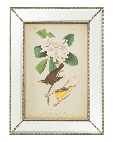 John Richard Collection - Audubon Flycatcher I - GRF-5441A