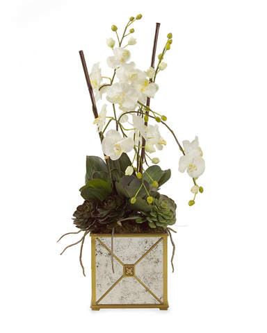 John Richard Collection - Mirrored Orchids - JRB-2252