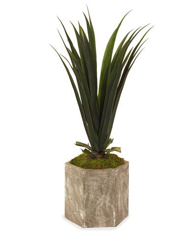 John Richard Collection - Yucca Plant Hex Concrete Container - JRB-2267V