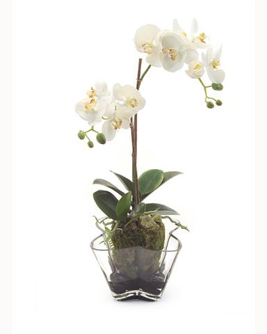John Richard Collection - Linen Orchids - JRB-2847W