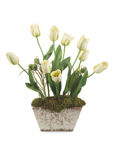 John Richard Collection - Potted Tulips - JRB-2885