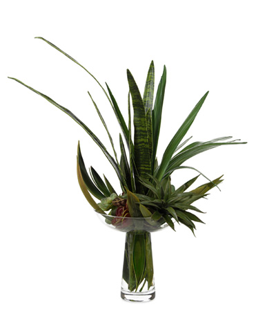 John Richard Collection - Succulent Spikes - JRB-3235W