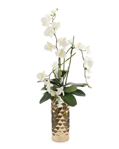 John Richard Collection - Diamond Orchids - JRB-3250