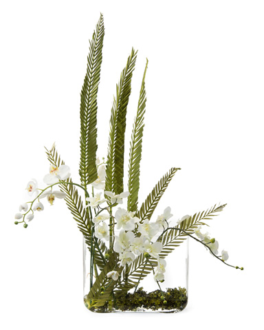 John Richard Collection - Coco Orchids - JRB-3375W